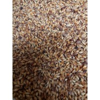 British Crystal Malt - 55 L