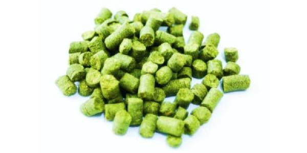 Nugget Pellet Hops 1 pound