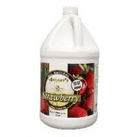 Vintner's Best Strawberry Wine Base 1 Gallon