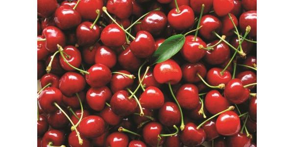 Cherry Fruit Wine Kit