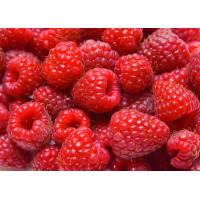Raspberry Fruit Wine Kit