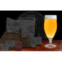 Orangutang Gluten Free Orange Spiced Belgian Ale