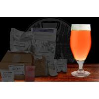 Strawberry Blonde Ale
