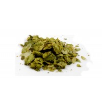 Pacific Gem Leaf Hops, 1 pound       ORGANIC